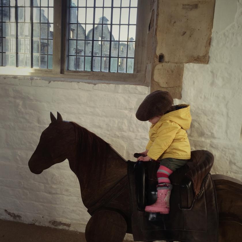 G on Horseback